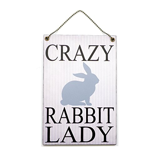 handmade-wooden-crazy-rabbit-lady-home-sign-247