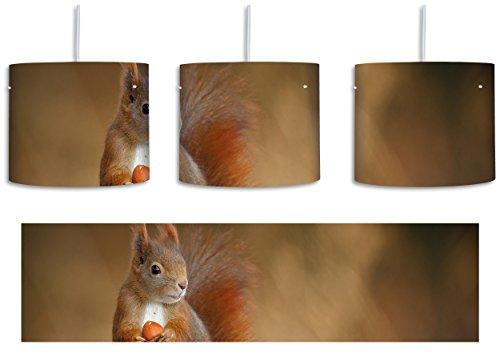 Freches Eichhörnchen mit Nuss inkl. Lampenfassung E27, Lampe mit Motivdruck, tolle Deckenlampe, Hängelampe, Pendelleuchte - Durchmesser 30cm - Dekoration mit Licht ideal für Wohnzimmer, Kinderzimmer, Schlafzimmer