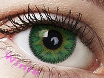 """Farbige Kontaktlinsen Jahreslinsen grün Immergrün""""Ever green"""" ohne Stärke mit Aufbewahrungsbehälter"""