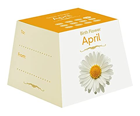 Gift Republic April Birth Flowers