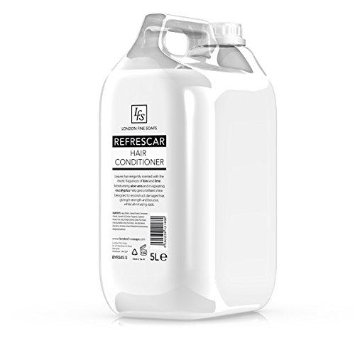 LFS refrescar Hair Conditioner 5Liter–2Stück