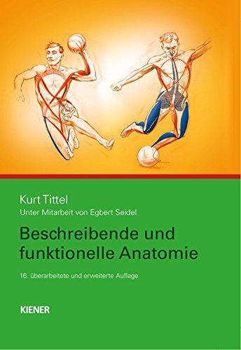 Beschreibende und funktionelle Anatomie (Tom Anatomy Myers Trains)