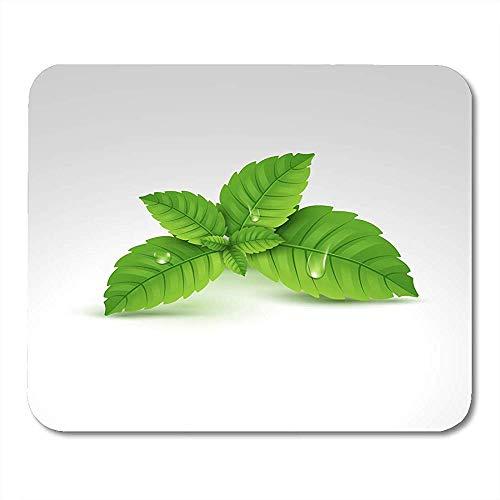 Mauspads Botanische Aromatherapie-Blatt-Menthol-gesundes Aroma-Kräuternatur-Pflanzen-grüne Minze-Balsam-Mausunterlage der frischen Minze -