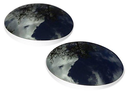 Kompaibel Ersatzgläser für Oakley Eye Jacket 1.0 (Polarisierte Grey Linsen) ()
