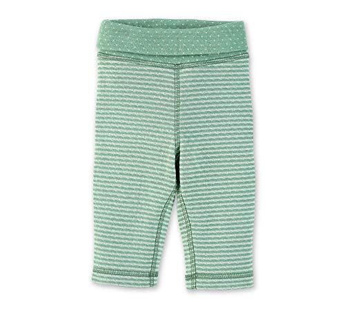 Sterntaler Hose mit elastischem Hüftbund, Streifen- und Punktemuster, Alter: 3-4 Monate, Größe: 56, Hellgrün
