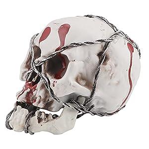 Modelo calavera,esqueleto brujería hueso cabeza