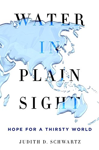 Water in Plain Sight: Hope for a Thirsty World por Judith D. Schwartz