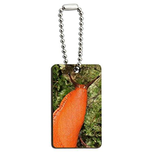 large-orange-slug-snail-mollusk-wood-wooden-rectangle-key-chain