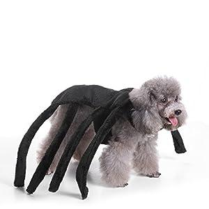 KINGDUO Haustier Kleidung Weihnachten Halloween Angst Schwarze Witwe Spider Harness Hundekostüm-S