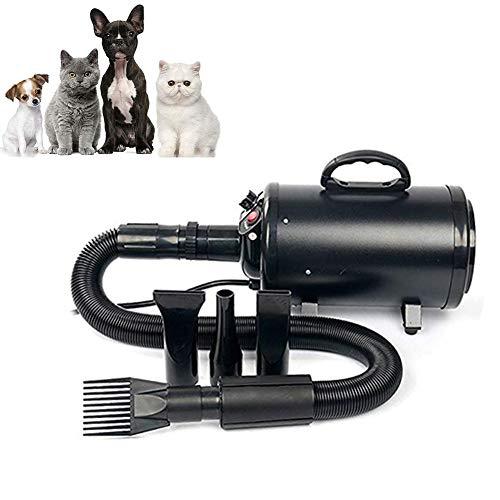 DJLOOKK Secador Mascotas Secador De Pelo Mascotas