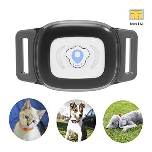 Mini gps hund cat tracker locator für £ haustiere wasserdicht ip67 echtzeit aktivitätsmonitor agps £ sms positionierung tracking gerät mit kragen enthalten sim karte (schwarz) - Für Gerät Tiere Tracking