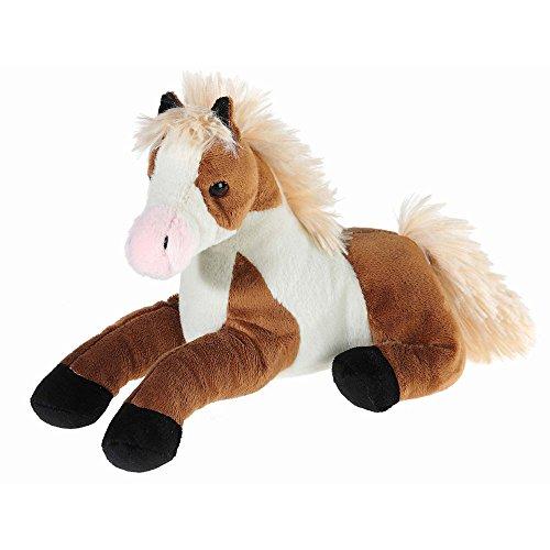 wendy-638174-dixie-das-western-pinto-pferd
