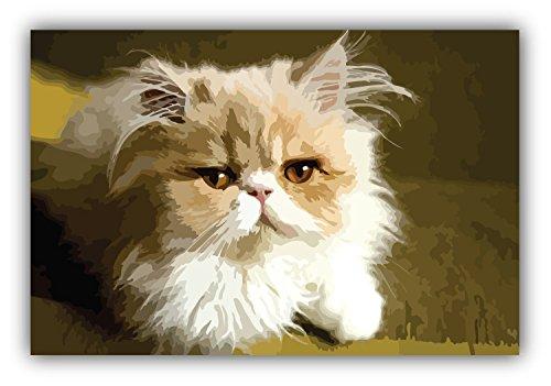 Persian Home Decor (Cute Persian Cat Auto-Dekor-Vinylaufkleber 12 X 8 cm)