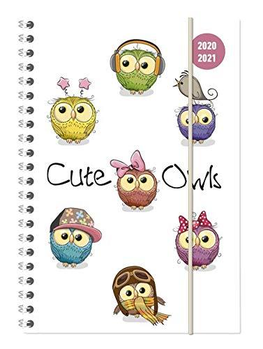Collegetimer Cute Owls 2020/2021 - Schüler-Kalender A5 (15x21 cm) - Eule - Ringbindung - Weekly - 224 Seiten - Terminplaner - Alpha Edition (Collegetimer A5 Ringbuch)