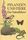 Pflanzen und Tiere. Ein Naturführer