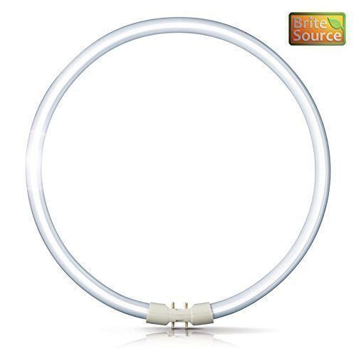 brite-source-eclairage-fluorescent-circulaire-40w-t5-840-blanc-froid-bs-t5c-40-840-2gx13