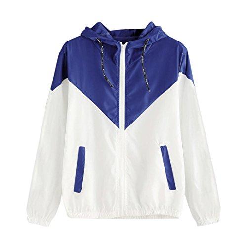Internet Damen Letter Trainingsanzug Kapuzen Sweatshirt Sportswear Bluse Tops (S, Blau-Sport Jacke)