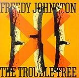 Freedy Johnston Country alternativo y americana