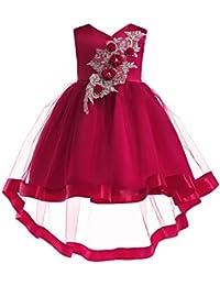 LZH Vestido de Fiesta de Bodas de Cumpleaños para Niñas Princesa Vestidos ...