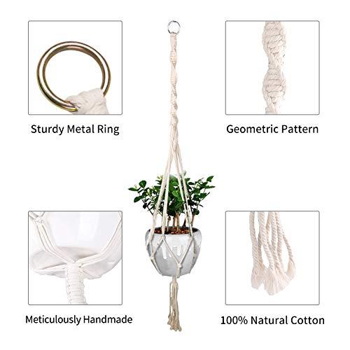 Zoom IMG-1 emooqi vasi sospesi per piante