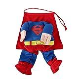 DIGIFLEX Haustier Superman Kostüm, Superhelden – Fasching/Fastnacht, Halloween – Outfit für kleine Hunde oder Katzen bis 25cm Hals - 7