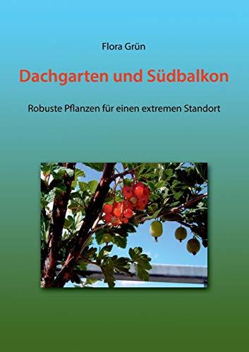 Dachgarten und Südbalkon: Robuste Pflanzen für einen extremen Standort