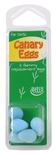 Hatchwell Co Ltd Hatchwells Canary Eggs 5Pk 1