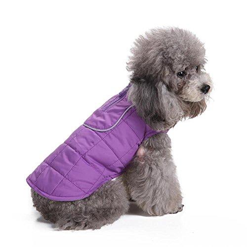 Myyxt Haustiere Kleidung Jacke Weste Soft Warm Herbst Winter Hergestellt aus Polyester Outdoor Wappen , (Riesige Brüste / Kostüme)