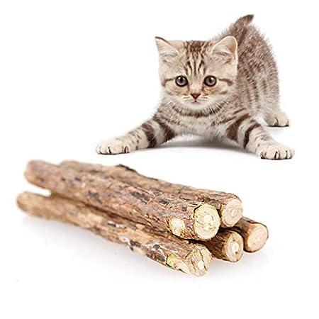 Jannyshop 20 STÜCKE Katzenminze-Sticks für Katzen, die Zähne putzen Kauen Spielzeug Dental Chew Sticks Zähneknirschen…