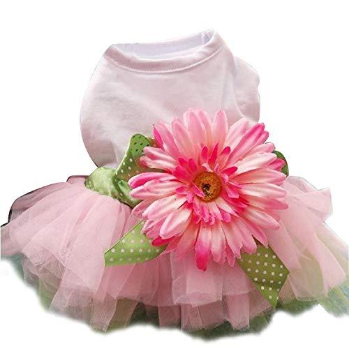 SEnjoyy Pet Daisy Flower Gaze Kleid Rock Pupyy Bowknot Princess Kleidung für Kleine Hund
