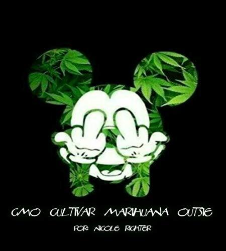 Cómo cultivar marihuana al aire libre
