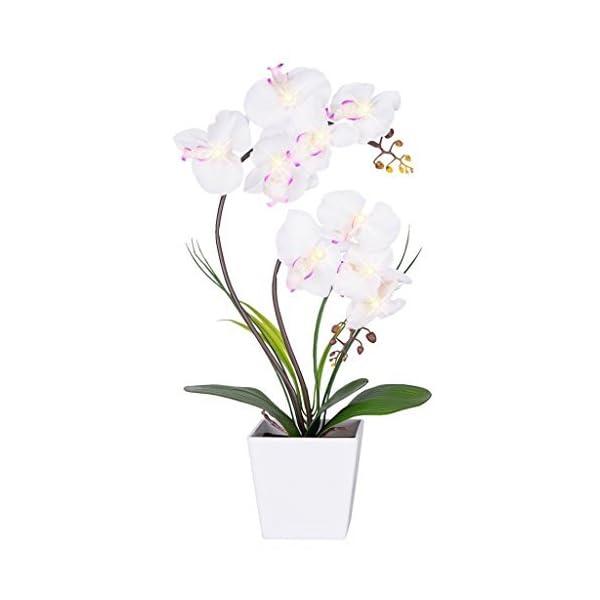 Homeseasons – Arreglo de flores artificiales iluminadas con LED – Maceta de orquídeas operada por batería con 9 luces.