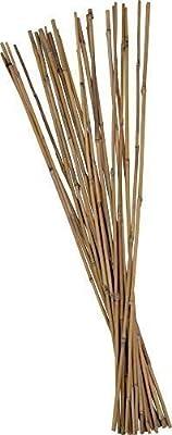 25 Stück Tonkinstäbe Bambusstäbe Pflanzstäbe Ø 10-12 mm x 120 cm von AnyTools auf Du und dein Garten