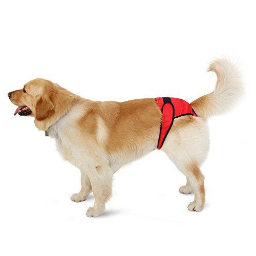 Weiblich Hunde Schutzhose Haustier Unterhose Unterwaesche Welpenhose Hose fuer Grosse/Kleine Hunde Laeufigkeit XL - 5
