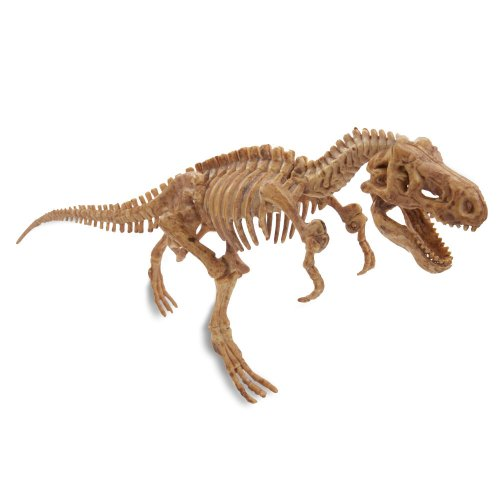 Imagen principal de Loco Lab LL0019 - Giro Dino Kit Xl Juego Educativo De Excavaciones De Dinosaurios (Buawana)
