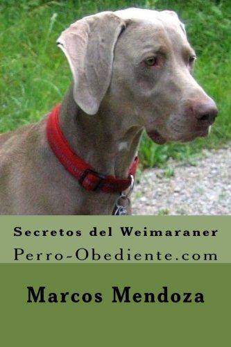 Secretos del Weimaraner: Perro-Obediente.com