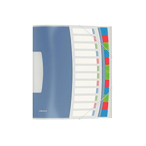 Esselte 624030 Ordnungsmappe VIVIDA, A4, PP, 12 Fächer, mehrfarbig