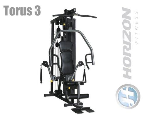 Torus 3Horizon Fitness forza station-Modell 2013/2014-Fitness Station