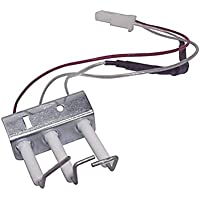 Conjunto electrodos calentador Fagor FEG11DB 810006484