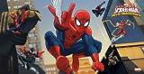 kit festa spiderman,1 festone spiderman, 12 palloncini spiderman, 1 poster spiderman
