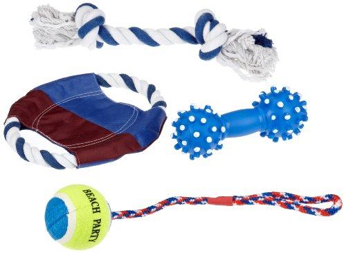 Trixie 3499 Spielset Sun'n'Fun für Hunde, 4 Teile
