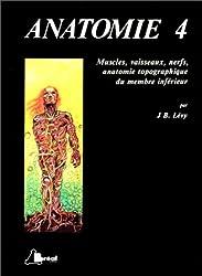 Anatomie Tome  4 : Muscles, vaisseaux, nerf, anatomie topographique du membre inférieur