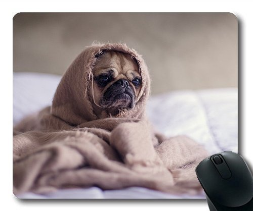 Individuelle Mousepad, Hunde Welpen Pet - Mousepad, Hunde - Decke Bett Tiere Lustig, der Hund Gaming Mouse Pad (Euro Decke)