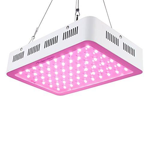 Roleadro 300W Led Floraison Lampe de Culture per Plante Horticole Croissance 5W Chip Full Spectrum Led Culture Indoor pour Grow Box Lampe de Croissance Floraison (308 * 208* 60mm)