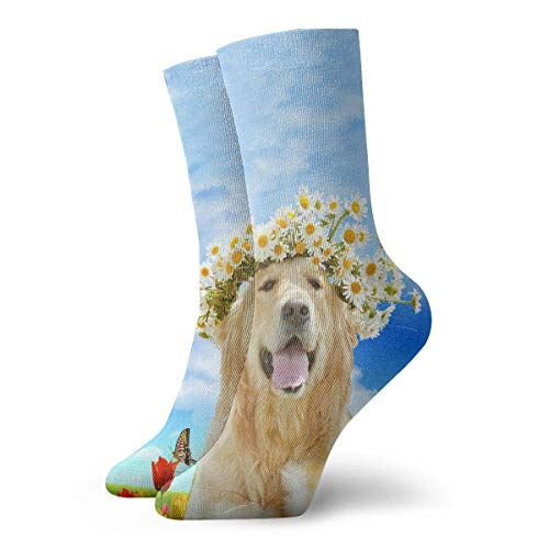 REordernow Kurze Socken für Männer, Frauen Golden Retriever Mens Printed Funny Novelty Casual Crew Dress Socks For Men Women Yoga Hiking Cycling Running Soccer Sports -