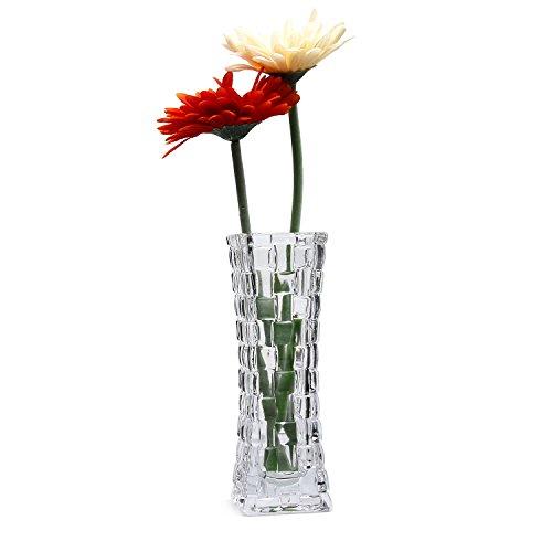 Rachel's Choice 17.9cm Alto Jarrón de Cristal Diseño de ratán Transparente Botella de Flores