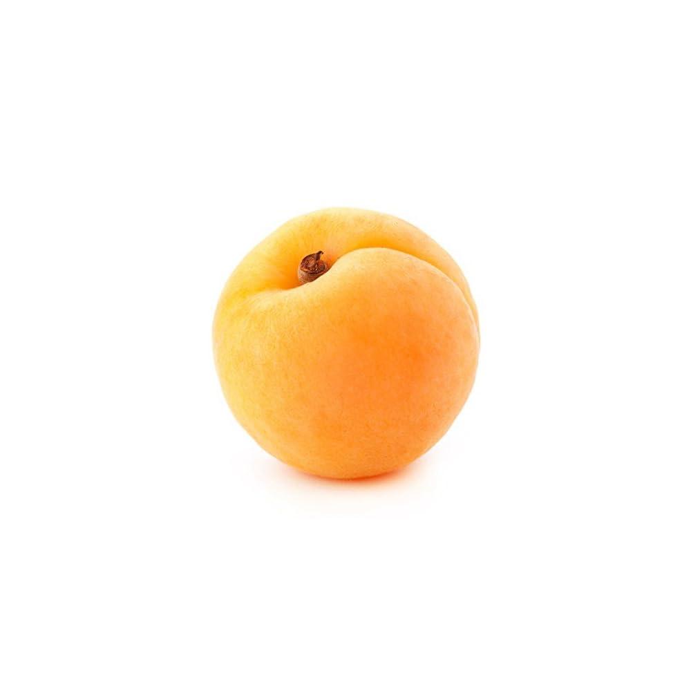 Bio Aprikosenkernl Kaltgepresst 100 Naturrein Lebensmittel Und Kosmetik 45 Kg Gratis Versand