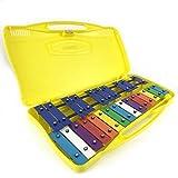 ProKussion WoodSopr Glockenspiel Soprano Xylophone professionnel avec 2 maillets et amplificateur