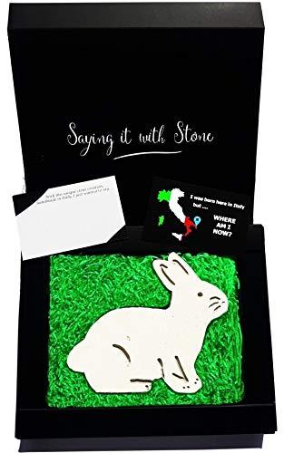 Kaninchen aus Stein - Symbol der Liebe, Glück & Harmonie - Geschenkbox & Nachrichtenkarte in...