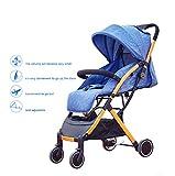 QZX Kinderwagen Rück- oder Vorwärtsfahrt mit Regenschutz Moskitonetz Sicherheitshandschlaufe Anwendbar im Alter von 1-3 Jahren